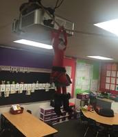 Silly Elfie made a zipline!