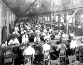 Males Working On Cigars