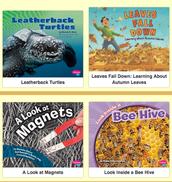 2. Interactive Bookshelf
