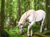 The Greedy Unicorn