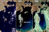 The Shrinking Sea