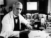 Biography on Alexander Fleming