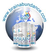 Perusahaan Brain Abundance