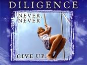GE LIFE PRINCIPLE-DILIGENCE