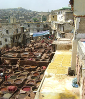 The Dye vats in Fez, Morocco