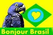 Bonjour Brasil
