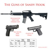 The weapons used in the Sandy Hook shooting