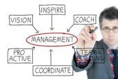 What Sales Manager do?