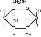 carbohydrate molecular structure