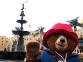 Paddington emocionado al conocer el Centro Histórico de Lima.