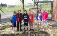 """""""I noticed worms pushing through the dirt and loosening the soil."""""""