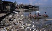Contaminacion en el Mar