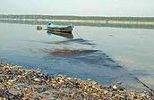 Danubio river: