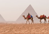 Camel back? Traveling in ancient Egypt