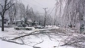 The Great Ice Storms of 1998