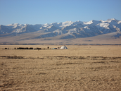 The Tibetan plateau!