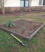 One of the raised beds waiting for plants