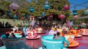 Disney Staff