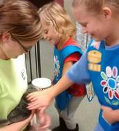 Fun at the Animal Shelter!
