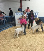 Allie with her goat at the fair