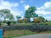 Millinnium Park