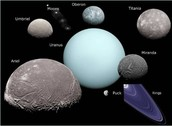 These are the five largest moons of Uranus
