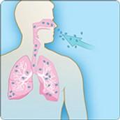 Inhalación