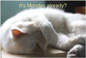 Reminder - Monday Morning