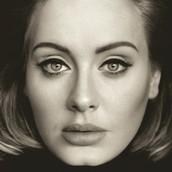 Case Study - Adele