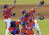 National Sport (Baseball)