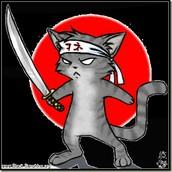 3# Ninja of the Night