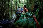 How does the drug trade affect indigenous communities?