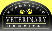 Hurontario Veterinary Hospital