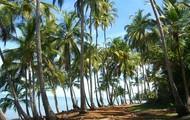 franch gaiunia island
