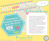 The Origami Owl Business Opportunity