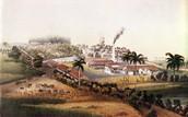 Sugar Plantation, San Jose de la Angosta, Cuba, 1857