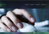Hot springs website design
