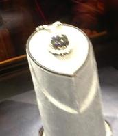 Yo vi el Diamante Hope. ¡Es muy hermosa!