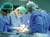 מהי השתלת איברים?