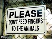 Don't give the animals food