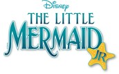 Little Mermaid Volunteers Needed