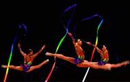 Gymnastics Wins!!!