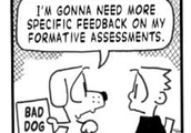 STRATEGY 4: Formative Assessment