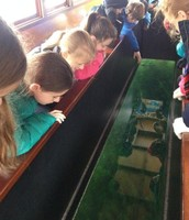 Glass-Bottom Boat Tour