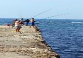 Coastal plains Fishing