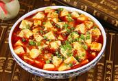 «mapo tofu/doufu»