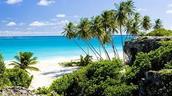 Barbados water life