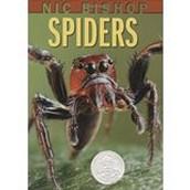 Spiders ~ Nic Bishop