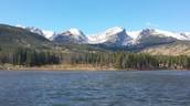 Rocky Mountain Beauty!