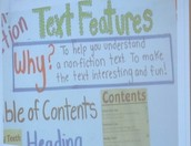 Text Features in Non-Fiction
